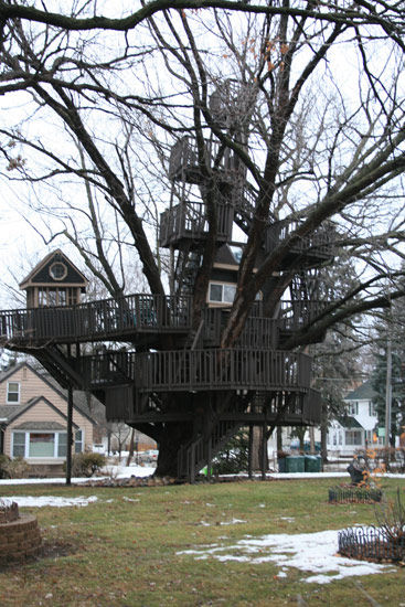The most amazing tree fort