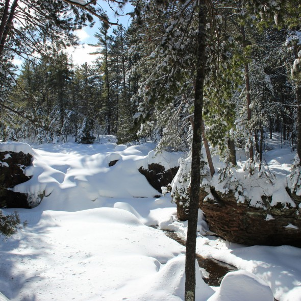 Snowshoeing at Amnicon Falls State Park in Wisconsin by Courtney Celley