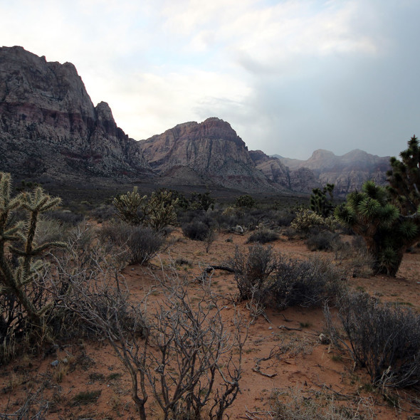 Red Rock Canyon by Courtney Celley.