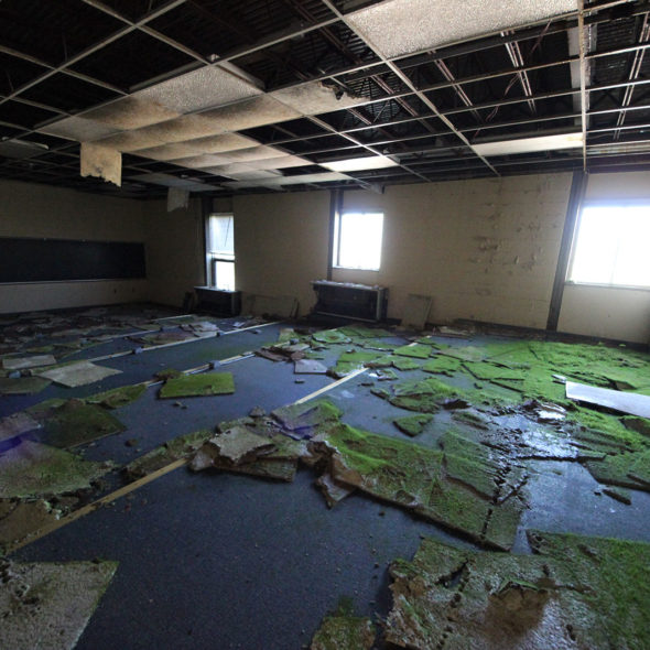 Ceiling Tile Growth in an Abandoned School by Courtney Celley