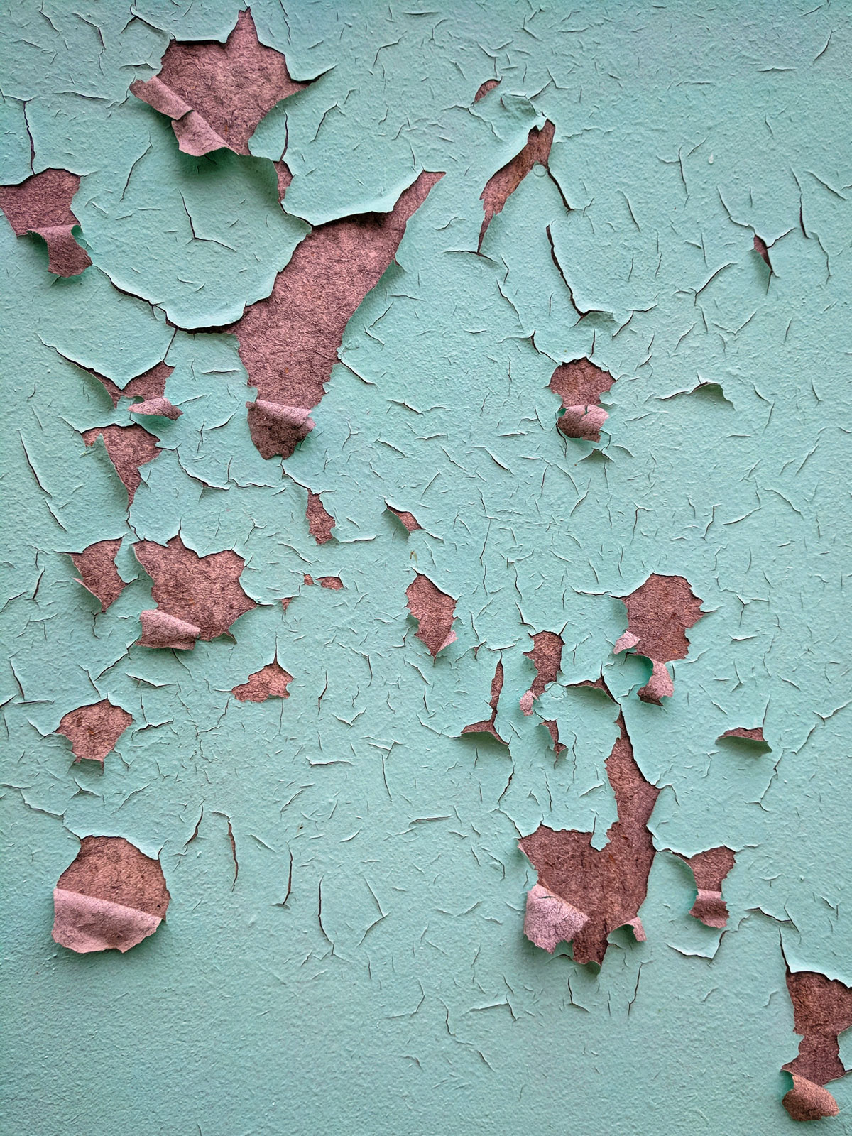 Peeling Paint by Courtney Celley