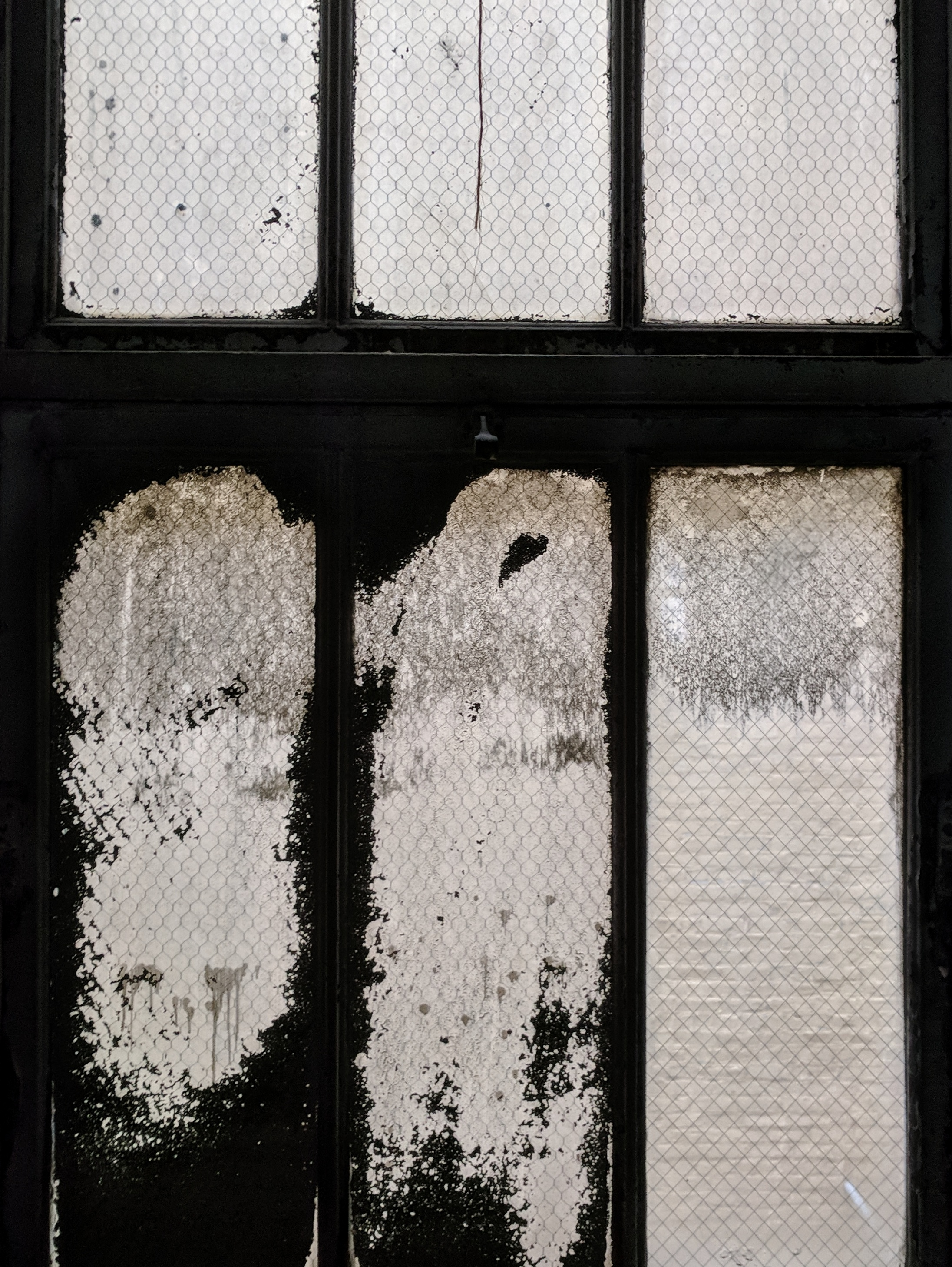 Warehouse Windows by Courtney Celley